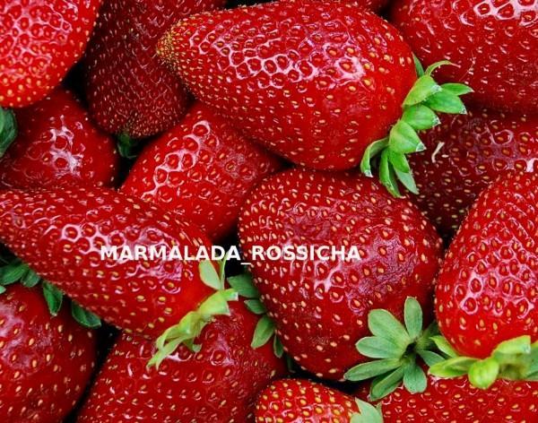 marmalada-rossicha.jpg