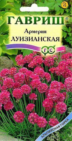 file_26_20.jpg