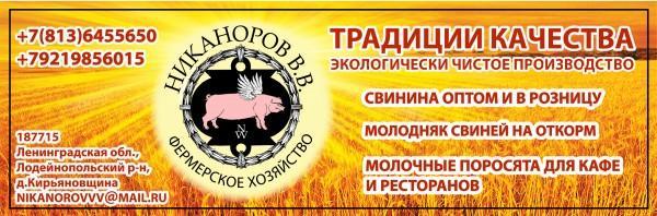 LASTNIKANOROV1.jpg