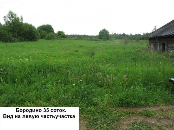 1_Бородино_лето_2010_надпись.jpg