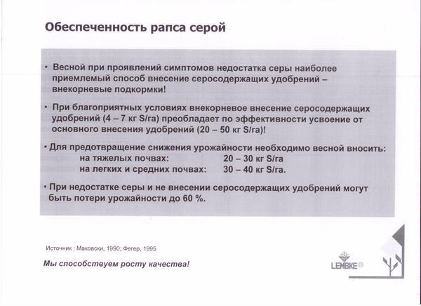 informaciya_po_rapsu_003.jpg