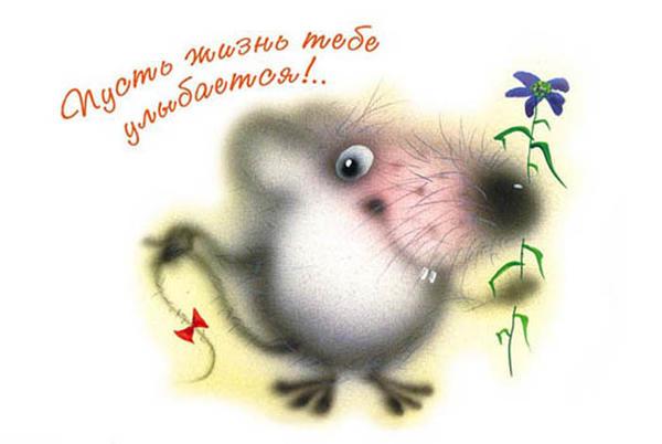 pust_zhizn_ulybaetsya.jpg