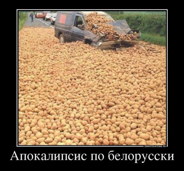 1882038_apokalipsis-po-belorusski_1.jpg