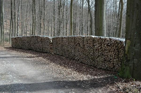 fuelwood1.jpg