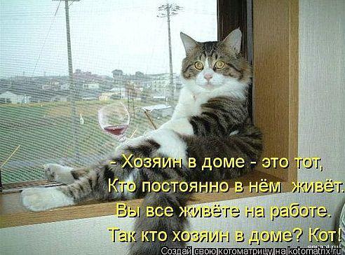 hozyain_v_dome.jpeg