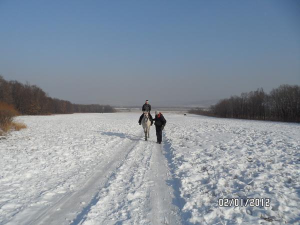 прошлой зимой _0921.jpg