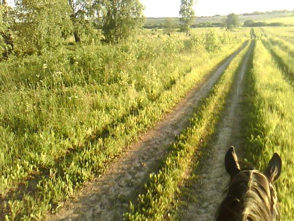 дорогой к соседним фермерам