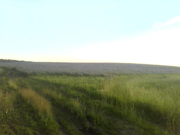 козлятник на горизонте