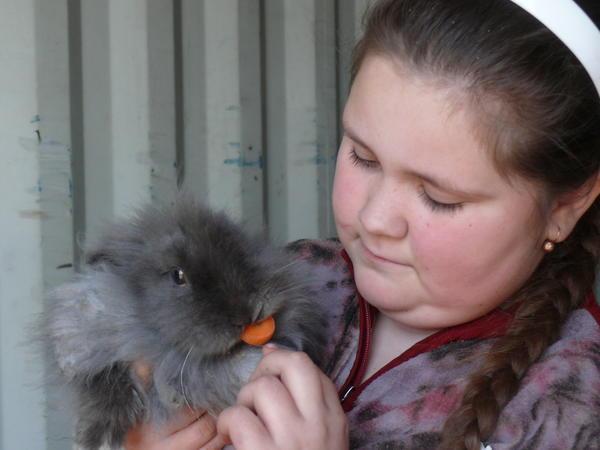 как мы любим морковку....jpg