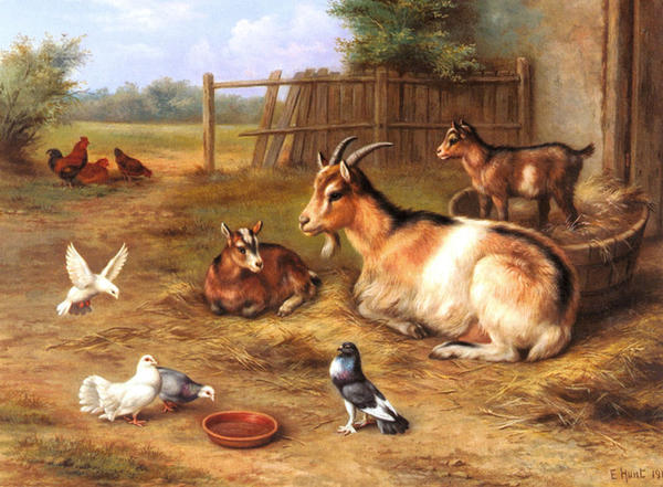 71573184_hunt_edgar_a_farmyard_scene_with_goats_chickens_doves.jpg