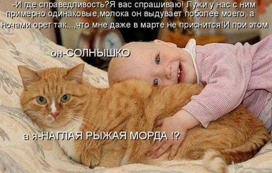 1328988886_25.jpg
