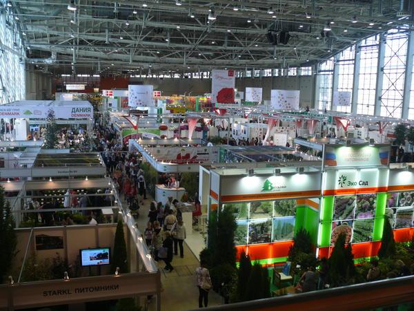 moskva_106.jpg