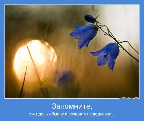 motivator-14886.jpg