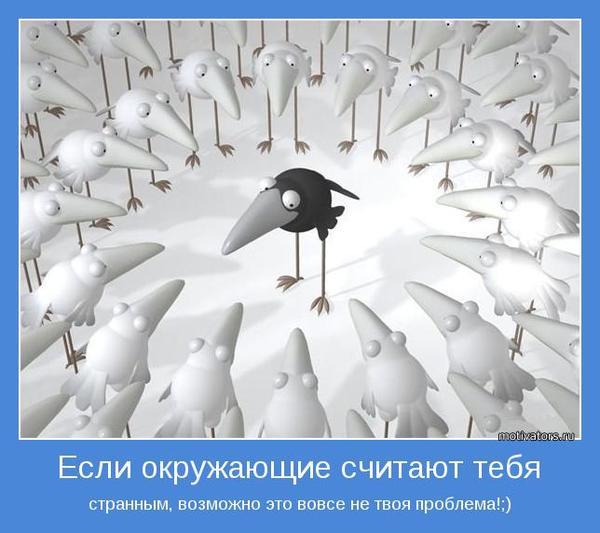 motivator-34275.jpg