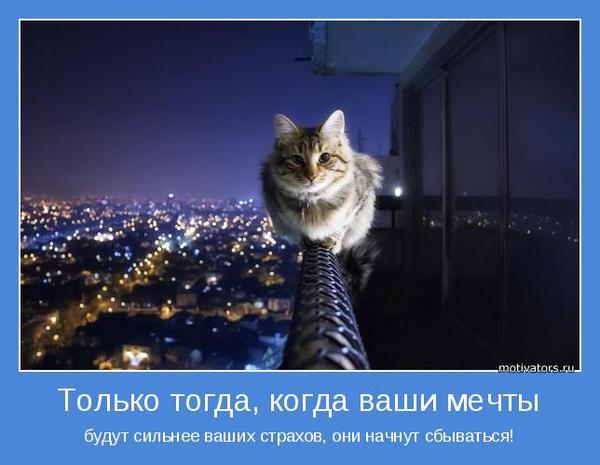 motivator-50931.jpg