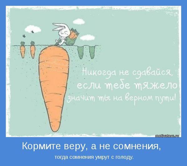 motivator-51241.jpg