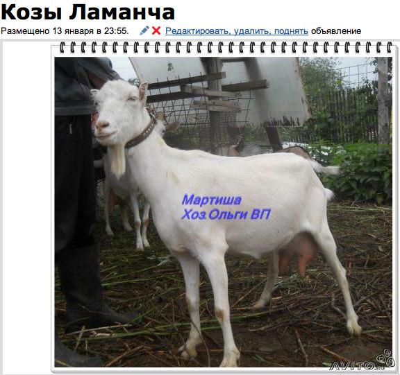 snimok_ekrana_2013-02-19_v_9.32.52_pm.png
