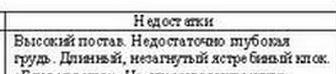 ekaterinburg_1-2_dekabrya_2012g-0004.jpg