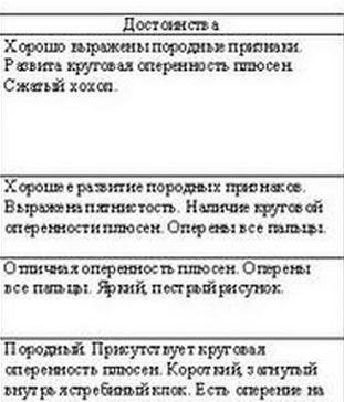 ekaterinburg_1-2_dekabrya_2012g-004.jpg