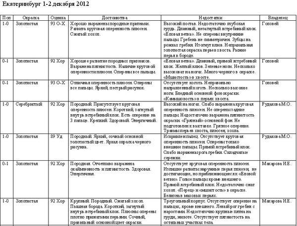 ekaterinburg_1-2_dekabrya_2012g-4.jpg