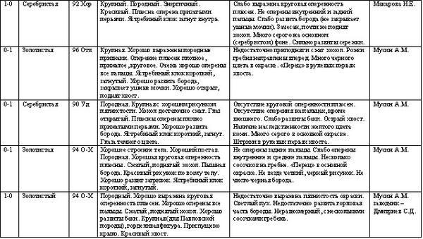ekaterinburg_1-2_dekabrya_2012g-5.jpg