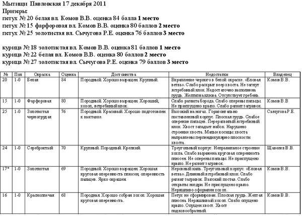 mytishchi_pavlovskaya_17_dekabrya_2011-1.jpg