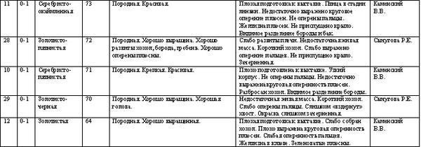 mytishchi_pavlovskaya_17_dekabrya_2011-3.jpg