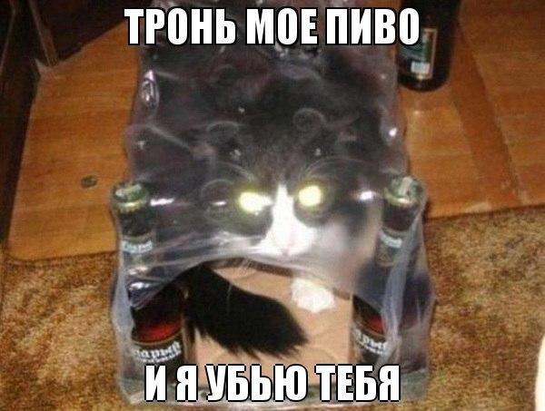 bbo92j0_yqs.jpg