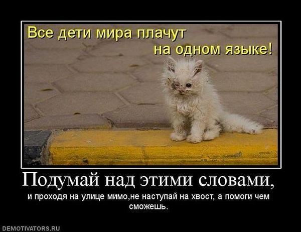 getimage_9.jpg