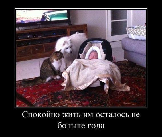 spokoyno_zhit.jpg