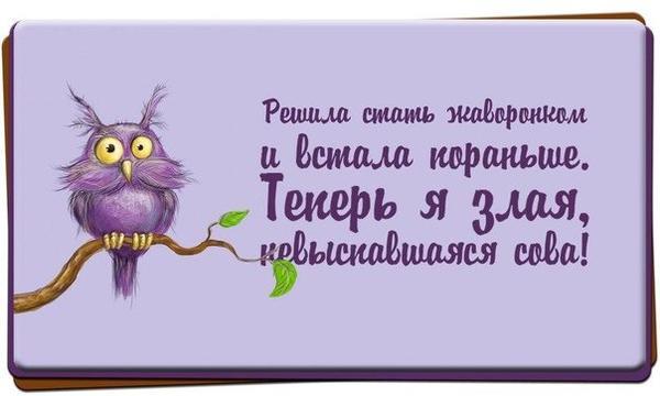 kosgqpecw0w.jpg