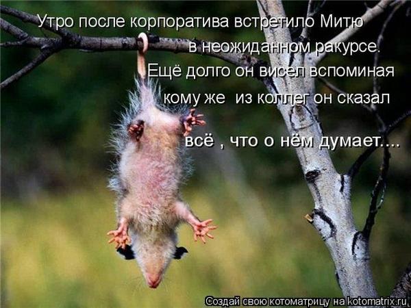 x_00fbdc32.jpg