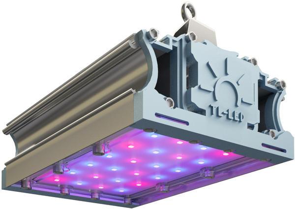 сколько W нужно для светильники для рассады