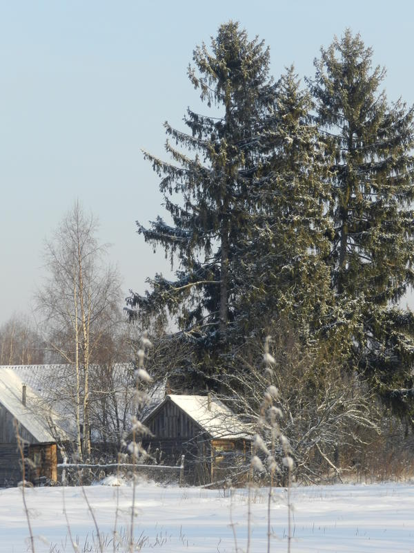 2010-12-3120-00-00150.jpg