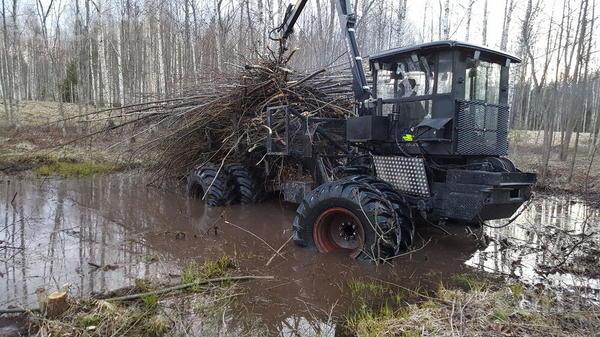 tree-trucks-19015583800.jpg