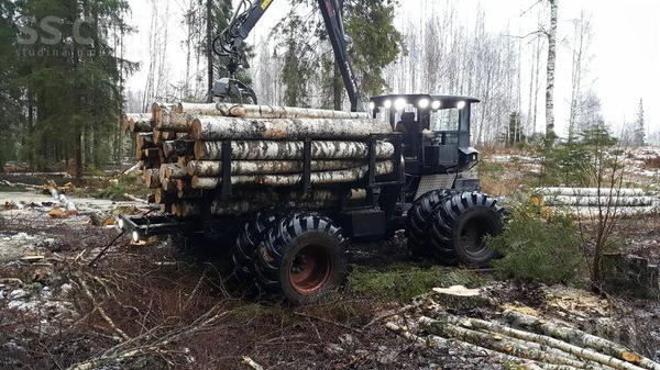 tree-trucks-19015585800.jpg