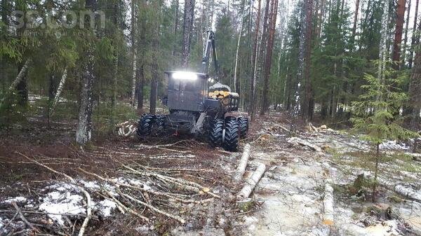 tree-trucks-19015587800.jpg