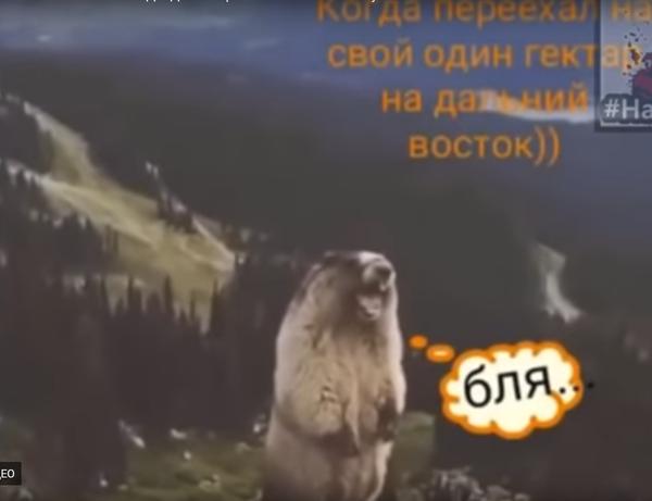 dalniyvostok1ga.png