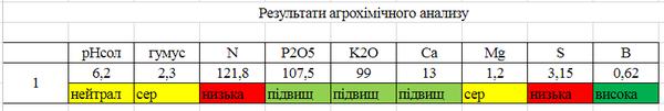 bezymyannyy111.png