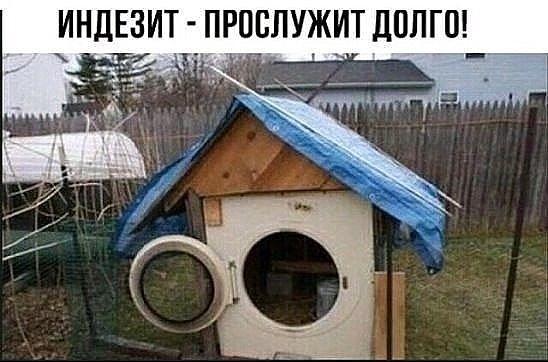 img20181127060524.jpg