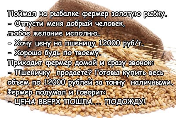 6ukqe-aznfm.jpg