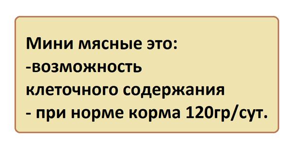 bezymyannyy2.png