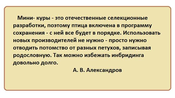bezymyannyy4.png
