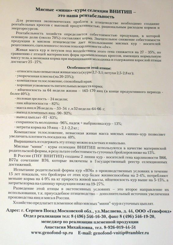 statyav-76.jpg