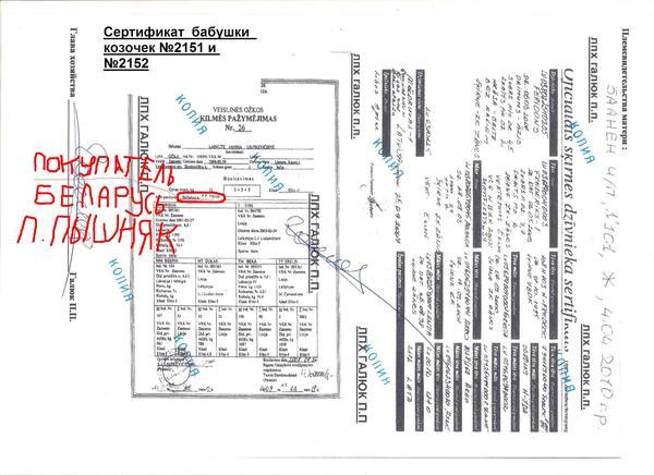 sertifikatmatmateri-babushka.jpg