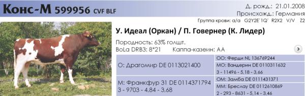 snimokekrana2017-06-09v95944.png