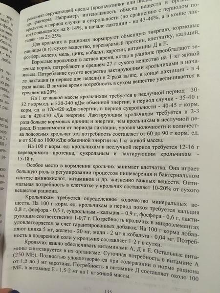 4d0c7592-a0f8-4d02-8f40-d4c19a277e76.jpeg