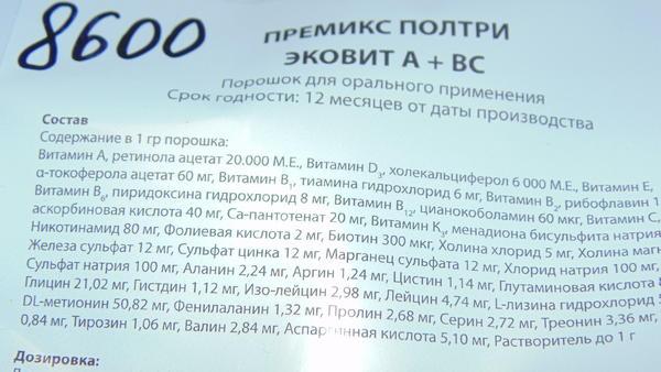 dsc00328.jpg