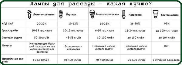 lampy-dlya-rassady-kakaya-luchshe.jpg