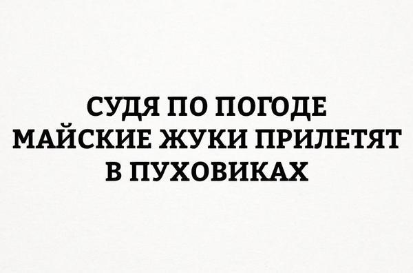 lcmhobagvf0.jpg